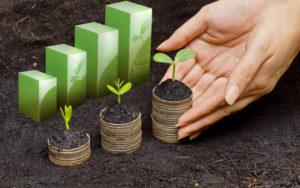 Идеи экологического бизнеса