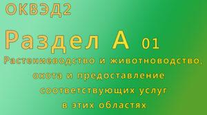 ОКВЭД 01 Растениеводство и животноводство, охота и предоставление соответствующих услуг в этих областях