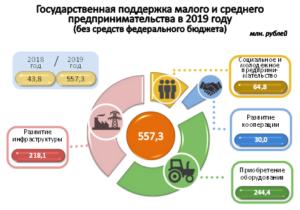 Краткий обзор государственных программ поддержки малого бизнеса в 2021 году