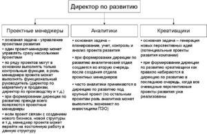 Директор по развитию бизнеса: обязанности, должностная инструкция