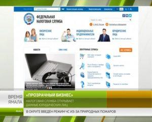 Прозрачный бизнес: новый сервис ФНС