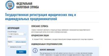Регистрация ИП онлайн через сайт налоговой: как зарегистрировать через сайт ФНС