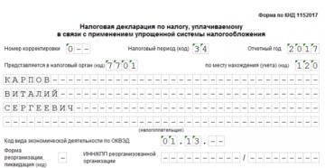 Декларация УСН при закрытии ИП: образец заполнения, скачать бланк